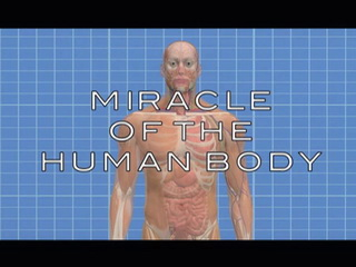 Miracle of the Human Body